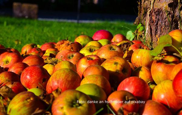 Dänische Apfeltorte – mein ultimatives Originalrezept
