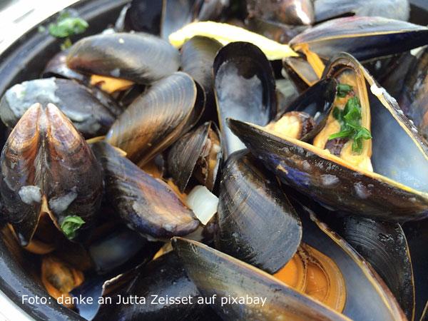 moules frites – sinnliches Muschelvergnügen